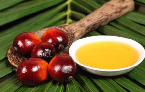 OMS e FAO fanno chiarezza su olio di palma. Cosa diranno ora i detrattori?