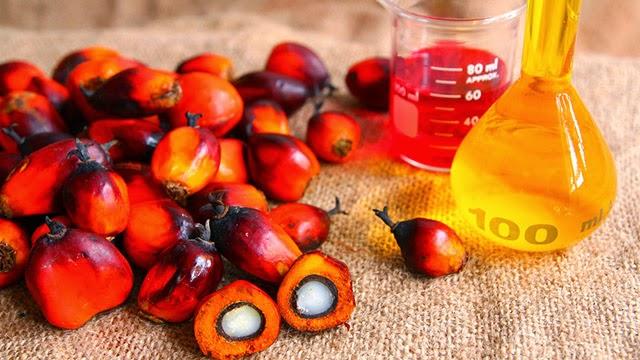 Fondo Francese per l'Alimentazione e la Salute: tutti gli aspetti nutrizionali, sociali ed ambientali legati all'olio di palma
