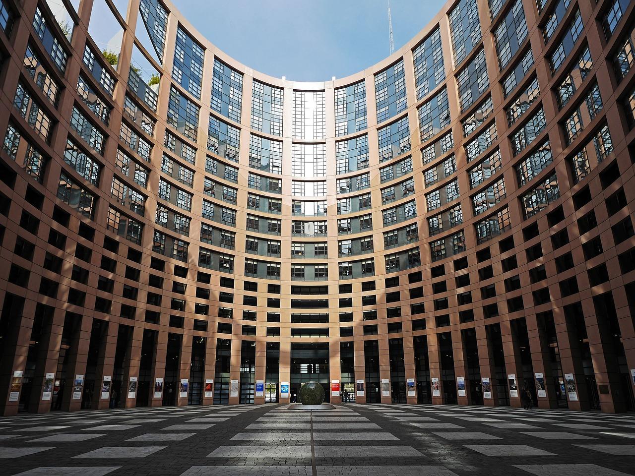 Olio di palma al voto in Europa: nessun bando né allarmismo