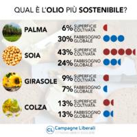 Infografica - Qual è l'olio più sostenibile?