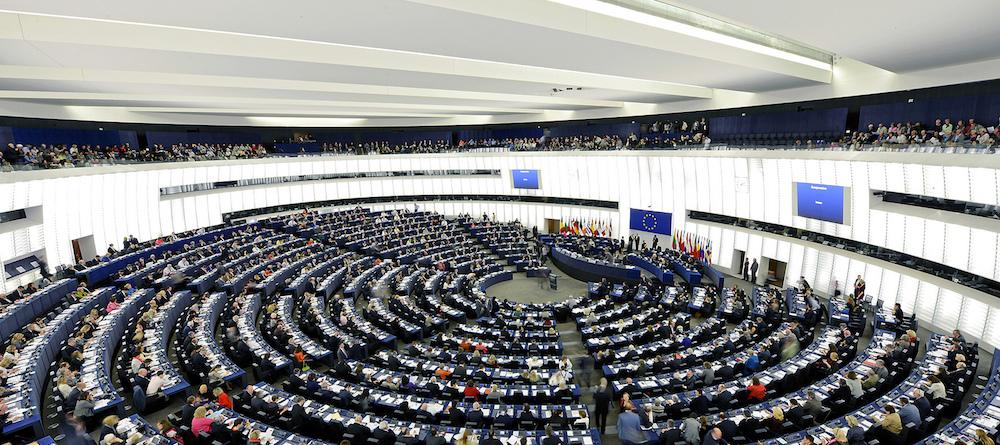 Olio di palma: Il Parlamento Europeo contro la verità e la scienza
