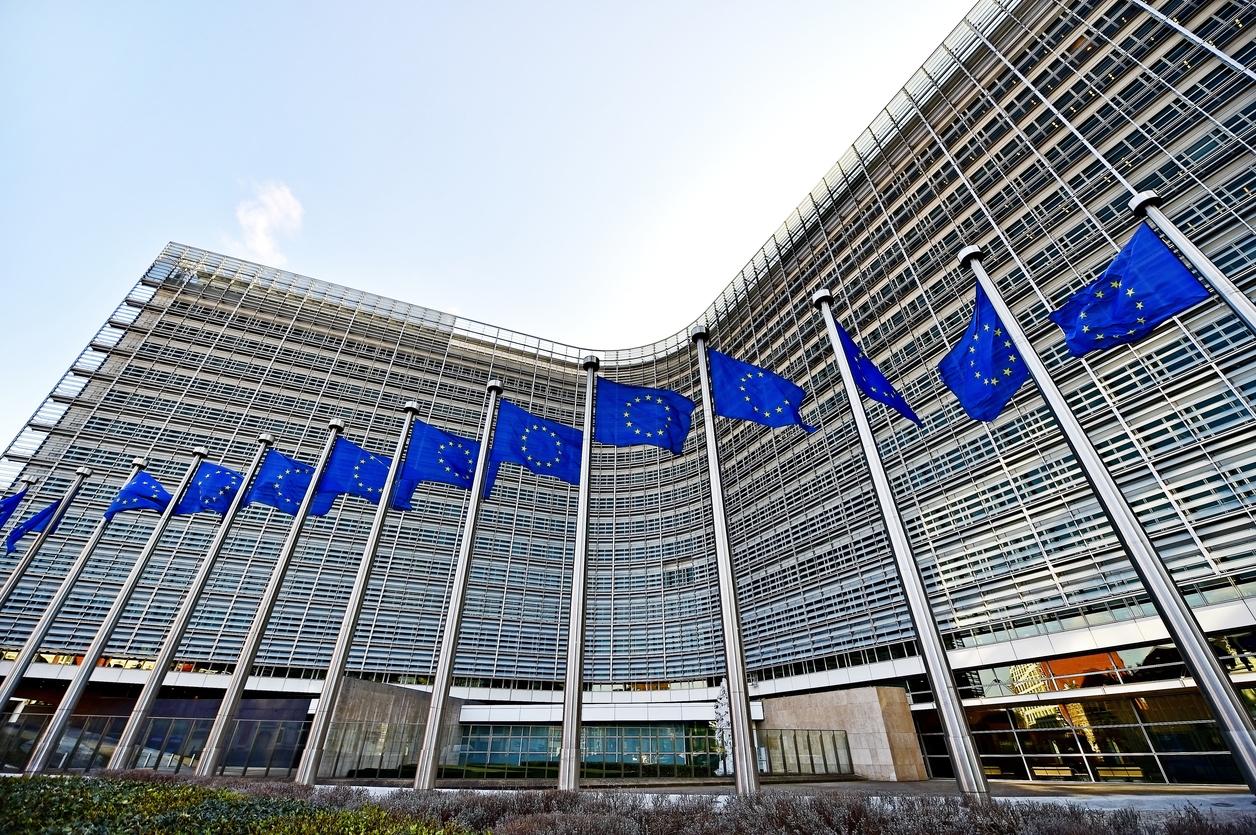 Appalti Pubblici in Europa: Disparità di Trattamento