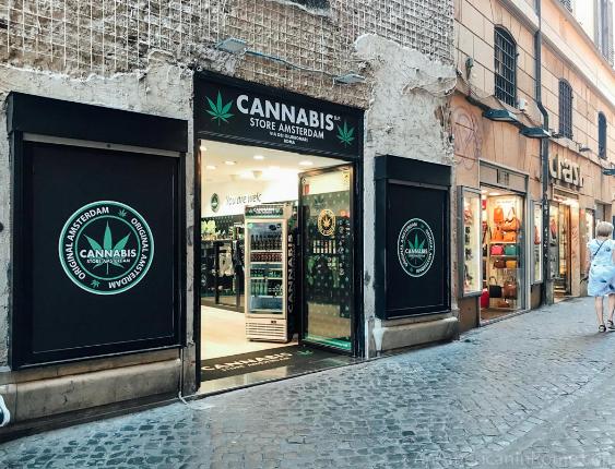 Contro la Marijuana Light: Salvini Promuove la Criminalità