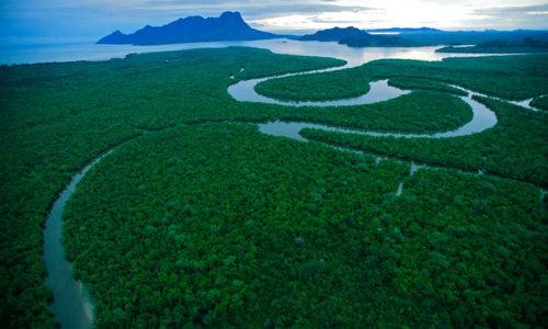 Nuovo studio norvegese: questa è la via per maggiore sostenibilità